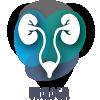 Icon Urologia